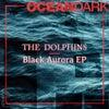Black Aurora (Original Mix)