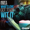 Whats Love Got To Do Wit It (Seth Vogt Remix)