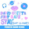 Stay (Don't Go Away) [feat. Raye] (Ferreck Dawn Extended Mix)