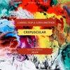 Crepuscular (Ziger Remix)