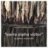 Sierra Alpha Victor (Quivver Remix)