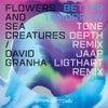 Better Tomorrow (Tone Depth Remix)