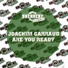 Are U Ready (Bingo Players Remix)