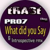 What Did You Say (Introspective Mix)