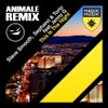 This Is the Night feat. Jenny G (Animale Remix)