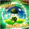 Wonderland (Manox Edit)