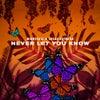 Never Let You Know (Original Mix)