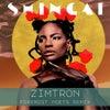 Zimtron (Foremost Poets Remix)