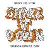 Shake It Down (Original Mix)