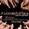 A Wonderful Place (Sean McCabe Classic Mix)