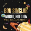 World Hold On (Extended Mix) [Tom Staar Remix] feat. Steve Edwards (Original Mix)