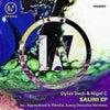 Salini (Hypnotised & PatriZe Remix)