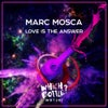 Love Is The Answer (Original Mix)