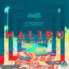 Malibu (Downlowd Remix)