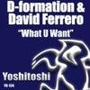 What U Want (Mindskap Remix)