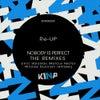 Nobody Is Perfect (Nicolas Duvoisin Remix)