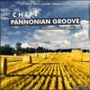 Pannonian Groove (Original Mix)