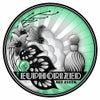 Euphorized (Original Mix)