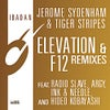 Elevation (Radio Slave's One More Kiss Remix)