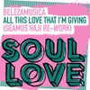 All This Love That I'm Giving (Seamus Haji Extended Re-Work)