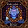 Krishna feat. Ankit Sharda (Katri Remix)