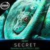 Secret (Jiro Remix)