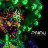 Changa (Pirupa Extended Remix)