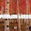 Planting Trees feat. Chezere' (Soul Pass (Vocal))