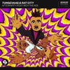 Afterparty (feat. Rich The Kid) (Extended Mix)