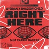 Right Here (feat. Carrie Baxter) (Extended Mix)