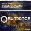 Peaceful Planet (Amitacek Remix)