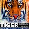 TIGER (EDM FESTIVAL MIX)