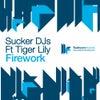 Firework feat. Tiger Lily (MK & MTV Remix)