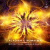 Spiritual Awakening (Original Mix)
