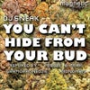 U Can't Hide From Your Bud (Dub Mix)