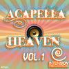 Spells (Acapella DJ Tool)