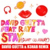Stay (Don't Go Away) [feat. Raye] (David Guetta & R3HAB Extended Mix)