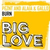 Burn (Extended Mix)