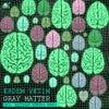 Gray Matter feat. Erman Danisment (Original Mix)