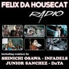 Radio (Infadels F.L.K Remix)