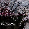 Big in Japan (Ivan Spell Radio Mix)