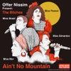 Ain't No Mountain feat. The Bitches (Original Mix)