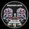 Wachufleiva 48-2 (Behache Remix)
