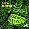 Tangled In (Original Mix)