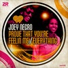 Prove That You're Feelin' Me Feat. Diane Charlemagne (Joey Negro Club Mix)