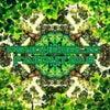 A Twisted Fairytale (Original Mix)