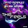 The Feels feat. Mr. V, DJ Rae, Scott Paynter (Original Mix)