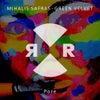 Poze (Original Mix)