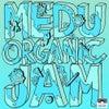 Organic Jam (Original Mix)