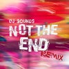 Not the End (Remix)